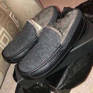NIB Men's Ugg Loafers